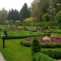 Французский сад, лето, пос. Довиль